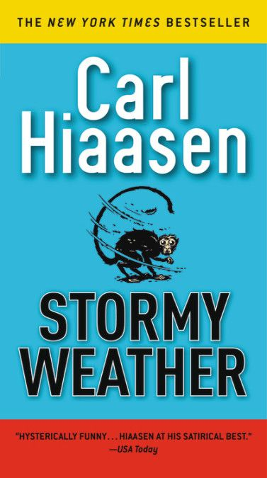 Stormy Weather: Skink, Book 3